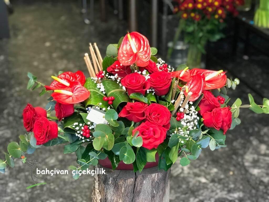 kýrmýzý çiçekler